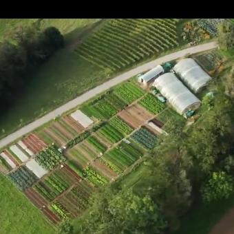 法国小农场