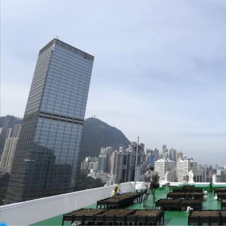 香港屋顶农场案例